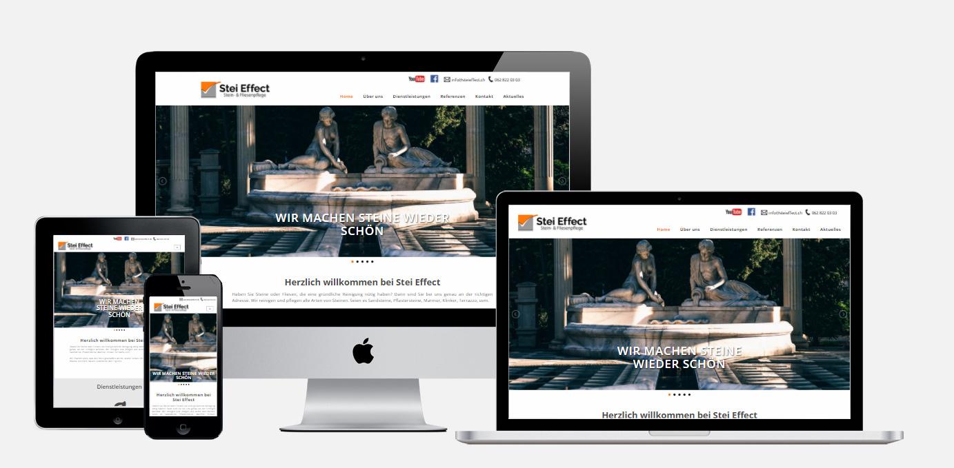 Steieffect Website